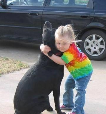 Criança manda carta para Deus após morte de cadela (Foto: Divulgação)